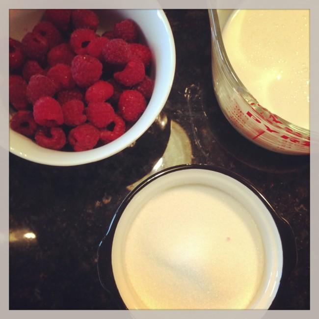 rasberry sorbet prep