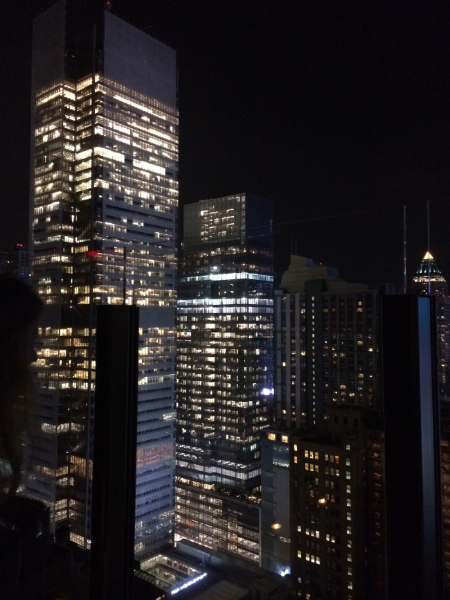 Skylark Rooftop Bar View