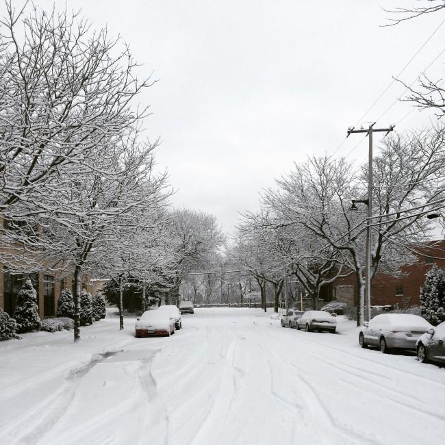 TNPLH: Snowy Walks